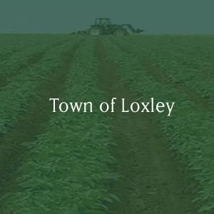 Town of Loxley